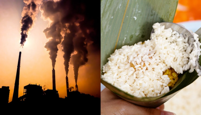 Left half depicts factory smoke pollutions and right half depicts rice being scooped into leaf