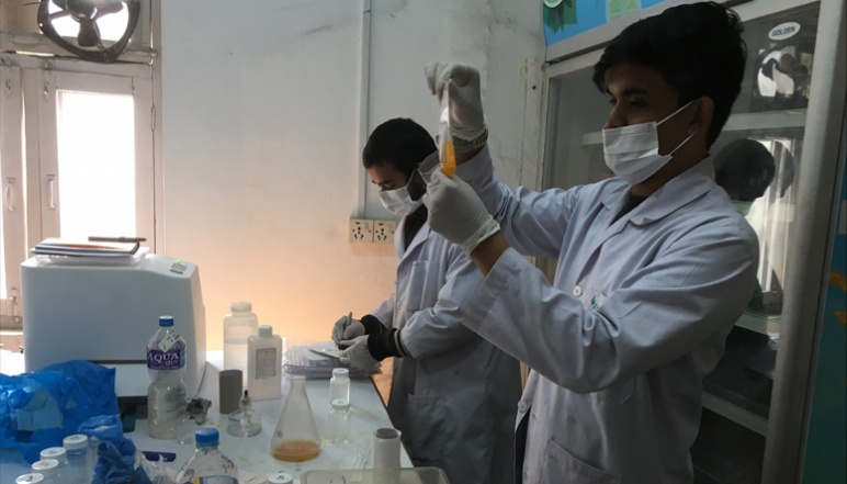 Shrestha and Dahal working at lab bench