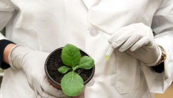woman in lab coat holding seed pot with pipette and growing plant